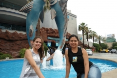 39-activities-Downtown-Aquarium