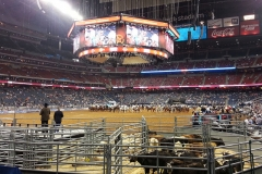 21-houston-Rodeo-Houston
