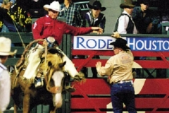 23-houston-Rodeo