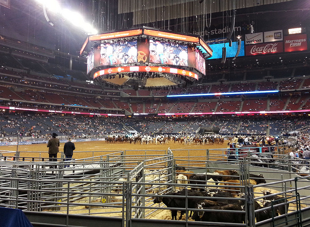 Cheap Rodeo Tickets